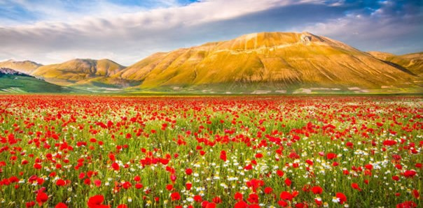 10-Spectacular-Places-To-Visit-During-Spring-Time-8